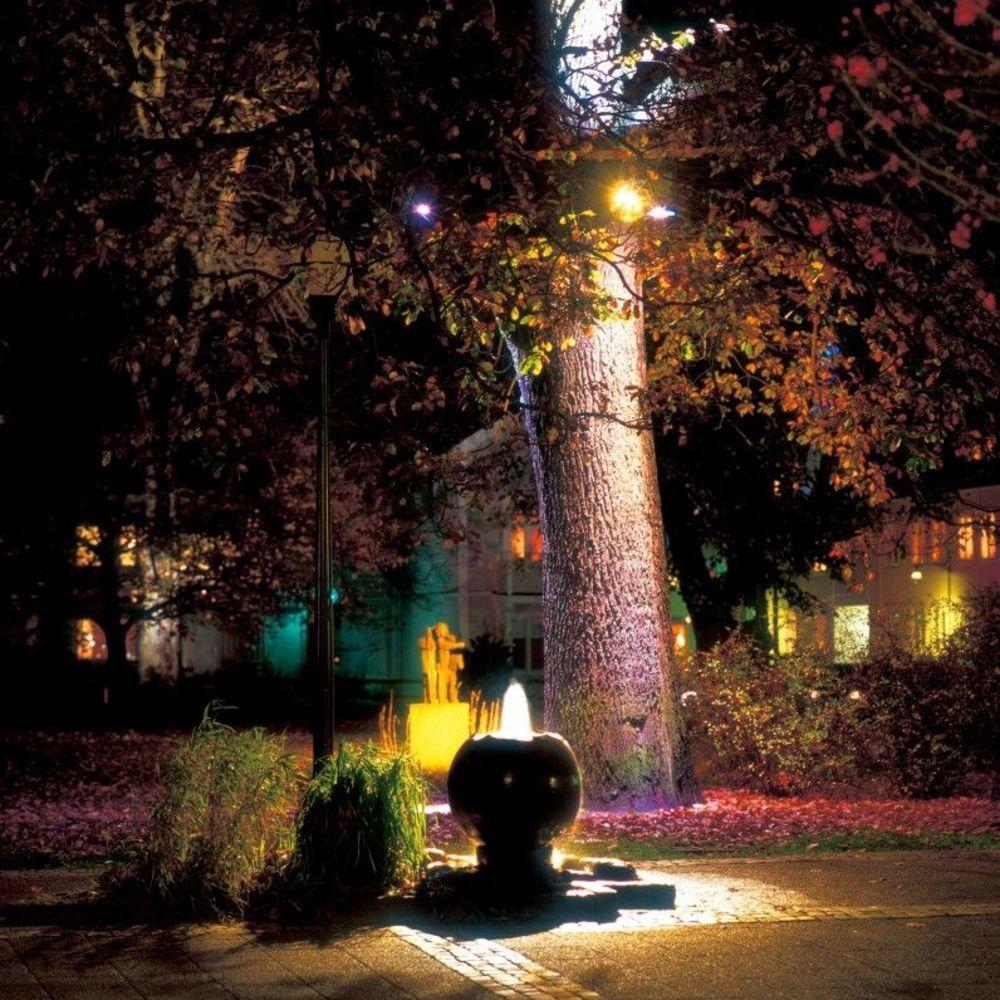 Site 1 Järtas Park